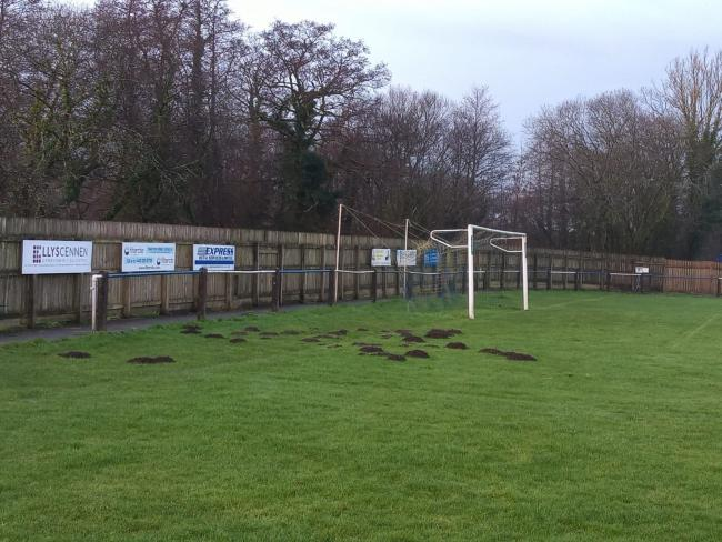 A group of moles have infiltrated Cwmamman United's Grenig Park during lockdown.
