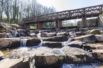 Botanic Garden nominated for glittering global prize
