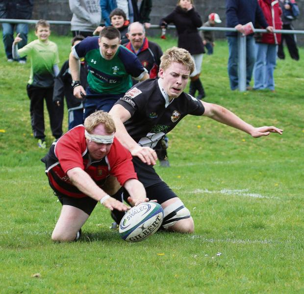 South Wales Guardian: TENACIOUS TENCH TOUCHDOWN: Flanker Mike Tench display tenacity to get his hands on Llandybie's solitary try in their 28-7 loss to Burry Port.Pic: SDD