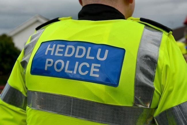 Dyfed-Powys Police are appealing for information.
