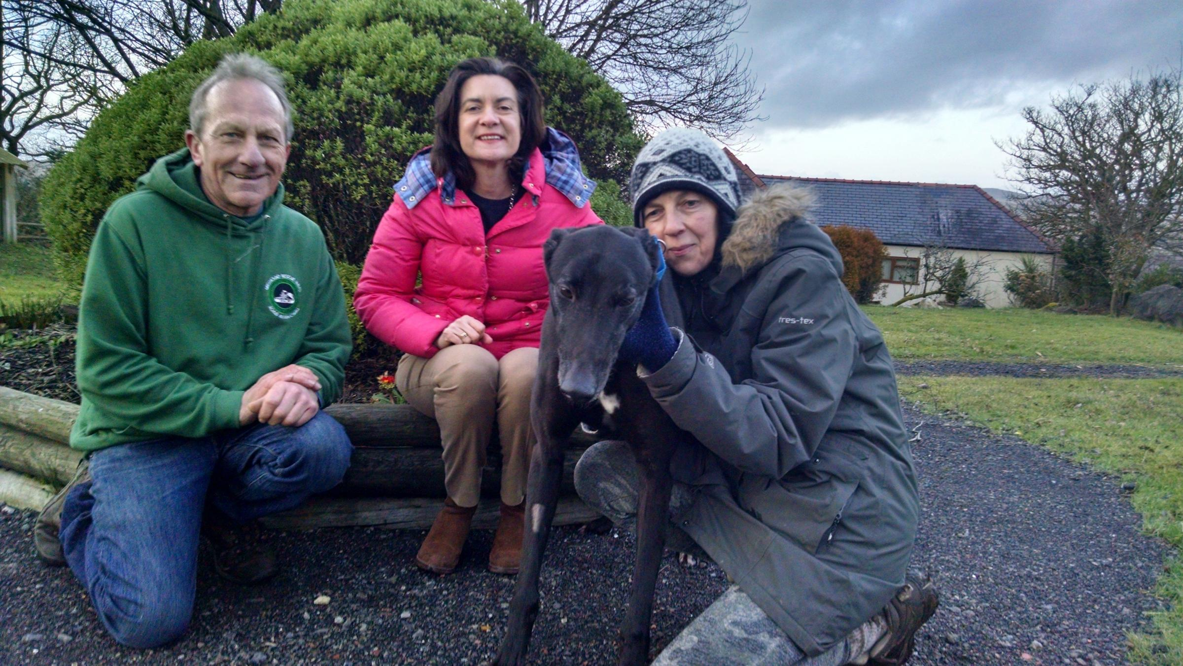 GRW founder Alain Thomas, Eluned Morgan AM and Hillcrest assistant manager Sandra Wynne, with former racing greyhound Jax