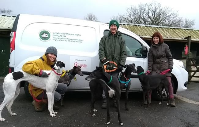 Greyhound Rescue Wales have purchased a new van to transport the rescued greyhounds safely and securely