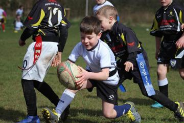 Youngsters shine at Tycroes tag rugby tournament