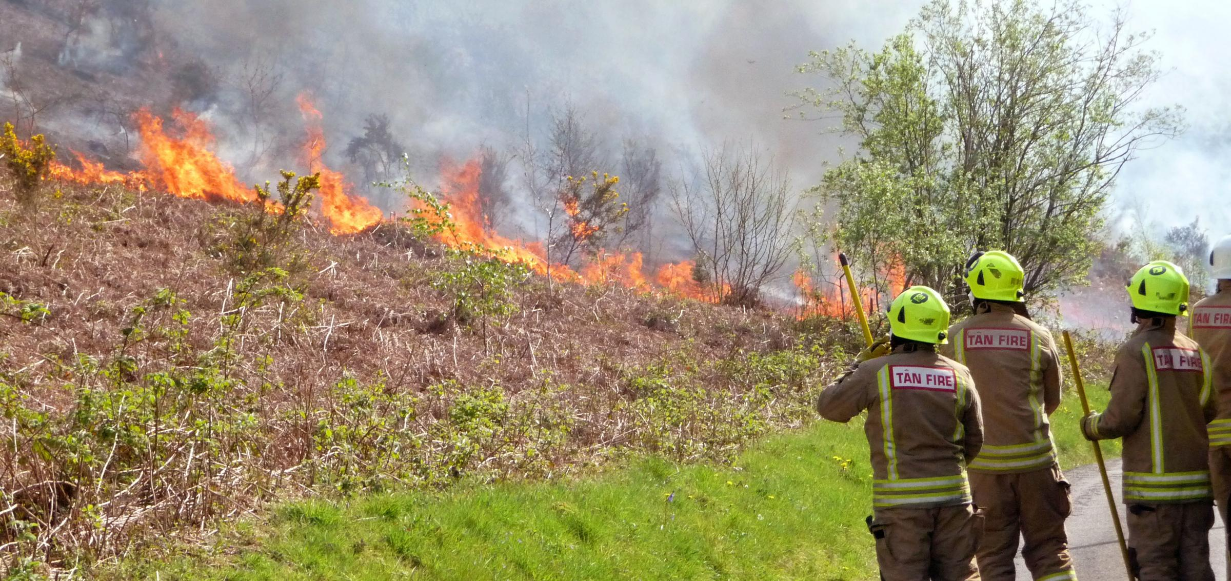 Firefighters called to deliberate grass fire near Ammanford