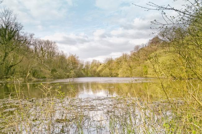 A view of Pant-y-Llyn at Llandybie, the only known Turlough lake in mainland Britain. The photo was taken in mid April by Paul Rees, Llandybie